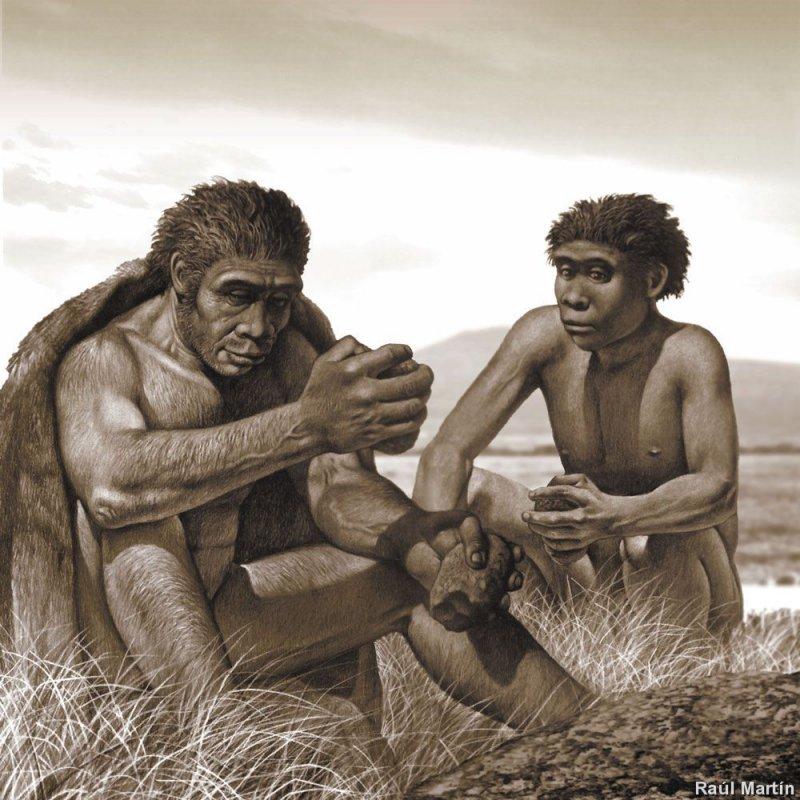 Неандертальцы пользовались антибиотиками