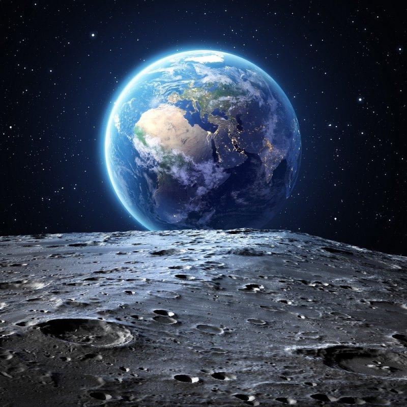 Шелкопряды на Луне
