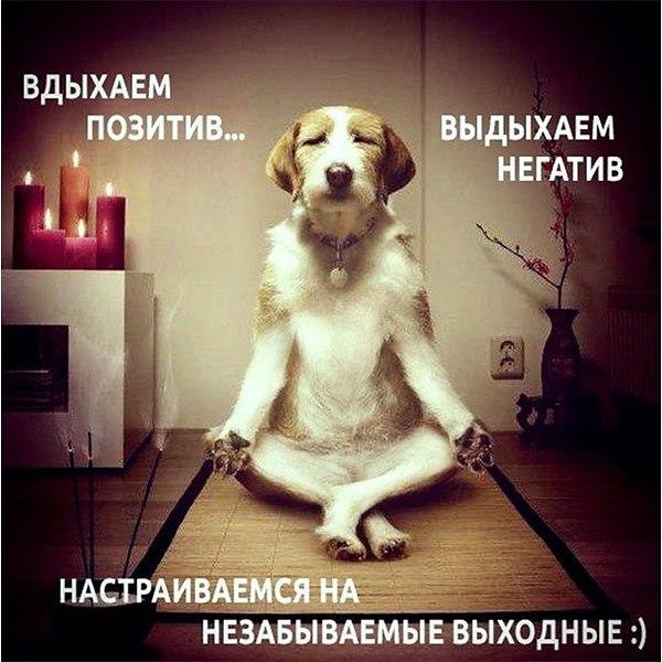 Отдыхаем!