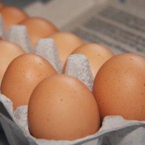 Как хранить яйца?