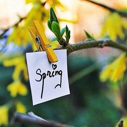 Отсчёт до весны